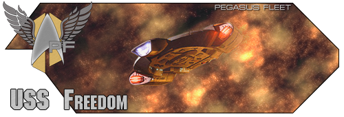 USS Freedom banner